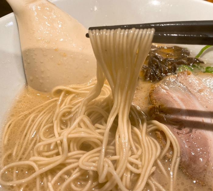 博多一風堂 札幌狸小路店 白丸元味  麺