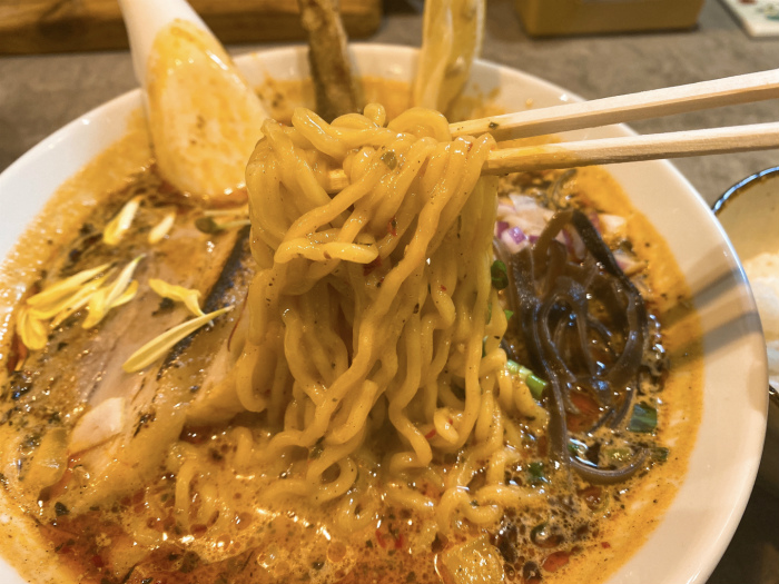 スパイスラーメン 点と線. 狸小路店 麺