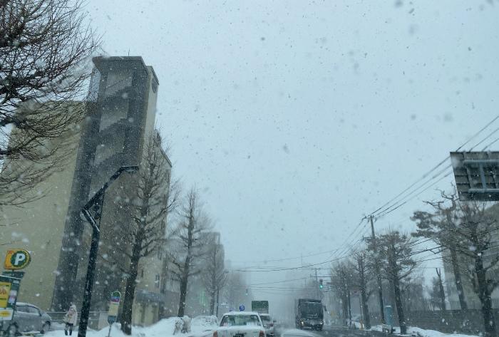 札幌 悪天候