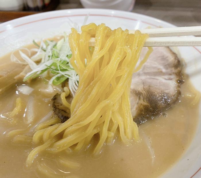 麺や 廉@北区北15西4 コクまろ味噌 麺